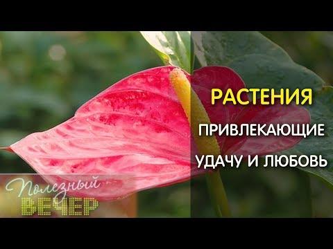 Самые богатые города россии 2016