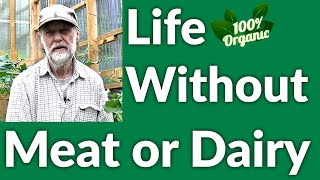 Life Without Meat or Dairy | Grow Your Own Food | September 2020