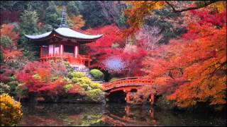 Дикая природа Японии фото