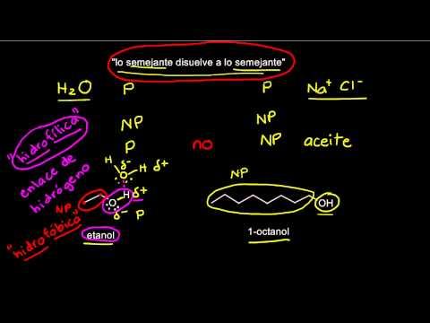 Escuela hipertensiva