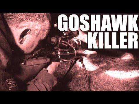 Goshawk Killer