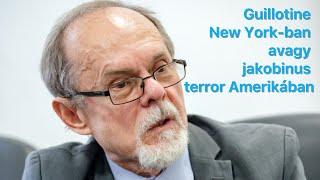 Guillotine New York-ban avagy jakobinus terror Amerikában. Egy Bogár Naplója