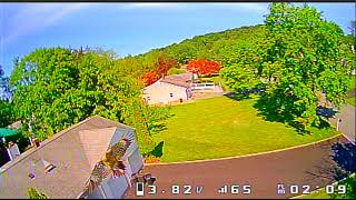 FPV Drone attacked by a hawk