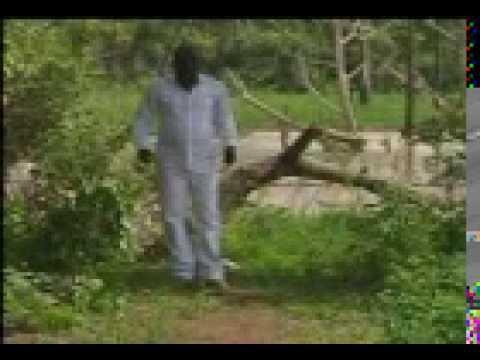 Download Aditu Olorun Funfun B HD Mp4 3GP Video and MP3