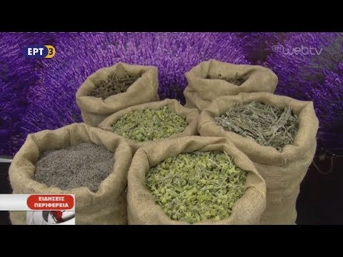 1η πανελλαδική έκθεση αρωματικών και φαρμακευτικών φυτών | 22/10/2018 | ΕΡΤ