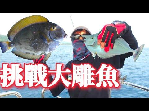 連續釣七天魚不回家!每隻魚都大到誇張!!挑戰釣魚人的頭腦!!(身分證體驗釣大魚)