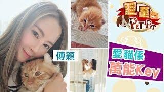 【巨星Pet Pet】傅穎愛貓係萬能Key