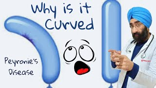 Curved Penis - Reason & Cure | Peyronie's Disease | Dr.Education (Eng)