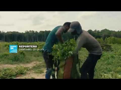 Reporters: Catumbo, Coca city