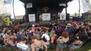 This Wild Life - Roots and Branches Live @ Warped Tour Orlando