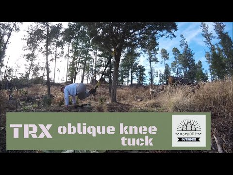 TRX Oblique Knee Tuck