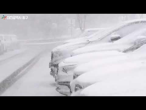 대전 동구에 함박눈이 펑펑~내렸어요