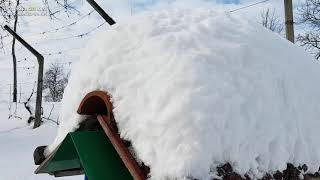 Sneg v Prlekiji