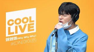 쿨룩 LIVE ▷iKON(아이콘) '왜왜왜(Why Why Why)'  /[DAY6의 키스 더 라디오] ㅣ KBS 210317 방송