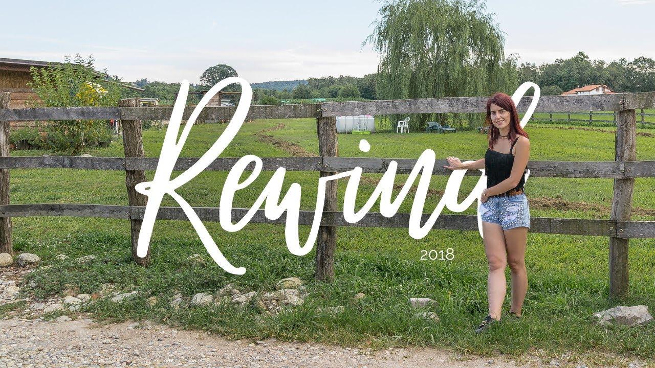 A Year in Travel ✨ REWIND 2018