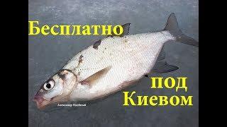 Где в мире хорошая рыбалка под киевом