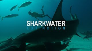 Sharkwater: Extinction – Video Teaser