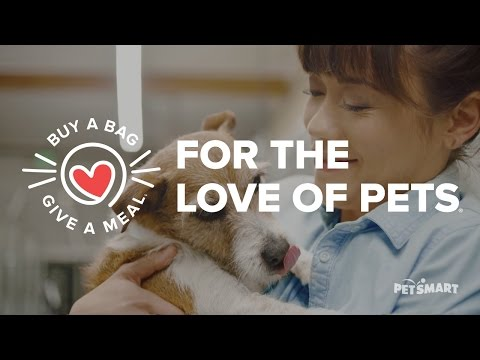 PetSmart Commercial (2017) (Television Commercial)