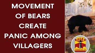 (11/07/2017) Oor Pakkam - Movement of bears create panic among Villagers | Thanthi TV