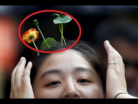 People In Beijing Have Plants Growing On Their Heads ?! What In The World?