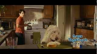Gregs Tagebuch 3 - Ich war's nicht! Film Trailer