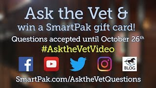 Ask your horse health questions for the December 2018 Ask the Vet video