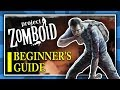 Project Zomboid: Beginner's Guide - How to get started