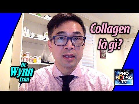 Bác sĩ Wynn Trần: Collagen là gì?