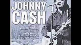 Johnny Cash - A Little Gray Donkey