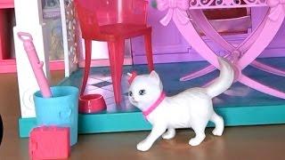 Видео с куклами, дом Барби, серия 493, кошка Блисса написяла Кену в туфли