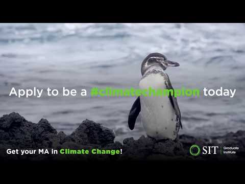 SIT's new MA in Climate Change and Global Sustainability