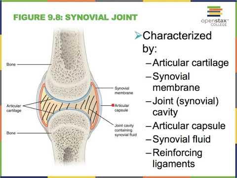 Ízületi fájdalom és helminthiasis