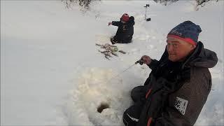 Рыбалка на севере форум 2020 сухое море ноябрь