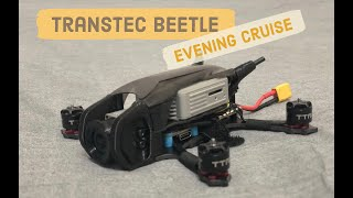 TransTec Beetle - Micro quad DJI HD FPV || Is It better than a Mavic Mini?