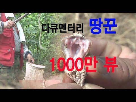 땅꾼a snake hunter