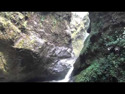 La Cueva de los Guácharos