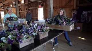 Beautiful Days Event Planning - Floral And Event Design (Behind The Scenes)