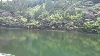 2013 11 Bass Fishing Damn