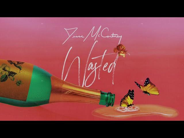 Jesse-mccartney-wasted-audio