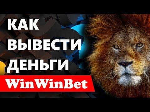 Как заказать выплату на платформе WinWinBet? Доверительное Управление для инвестирования денег.
