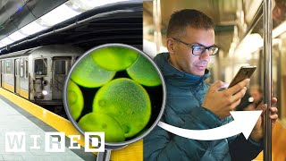 What Doctors Learned from Swabbing Subways in Different Countries | WIRED