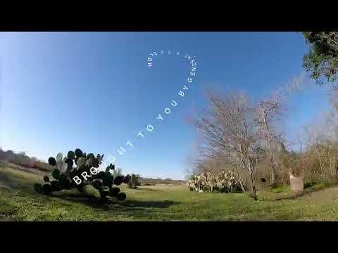 immersion-vortex-150-mini-enjoying-the-
