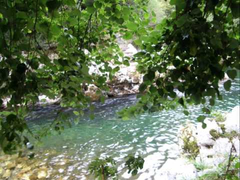 El rio. Amieva. Asturias.