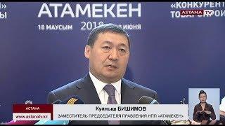 НПП «Атамекен» и «Самрук-Казына» начнут отбирать проекты для импортозамещения