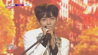Show Champion EP.242 The Rose - Sorry [더 로즈 - 쏘리]