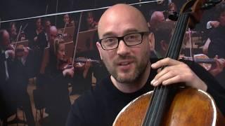 Fakten über das Cello