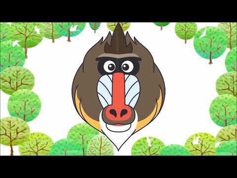 マンドリルのマンタロウをどアップでどうぞ★到津の森公園