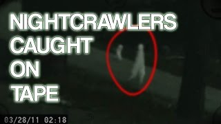 Nightcrawler Creatures Caught on Tape