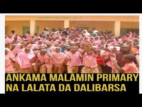 Ankama Wani Malamin Primary Yana Talata Da Wata Karamar Yarinya Allah Ya Kyauta