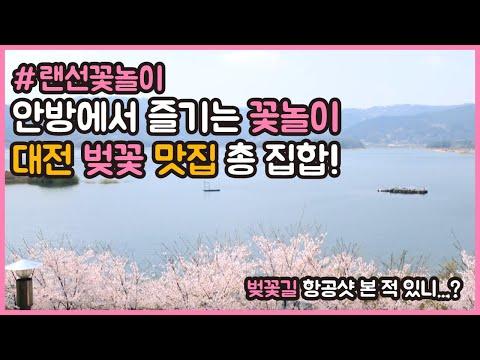 [랜선꽃놀이] 올해는 안방에서 편하게 꽃 구경하세요~ 26.6km 대청호 오동선 벚꽃길 항공샷 전격 공개!